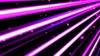 疾走感のあるカラフルな線と星 紫色 背景 ループ