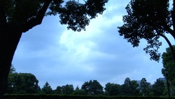 Sky and clouds and trees 02