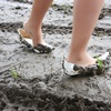 Wet&Messy Shoes画像集023