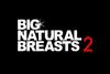 BIG NATURAL BREASTS 2