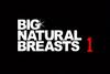 ランク10国特別監修 BIG NATURAL BREASTS1