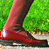【转载版】Milady的白色袜子+黑色的故事+棕色的高袜子走开了蜻蜓和蜗牛!