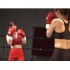 フィーメールリミテッドボクシング